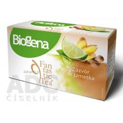 Biogena Fantastic Tea Zázvor & Limetka